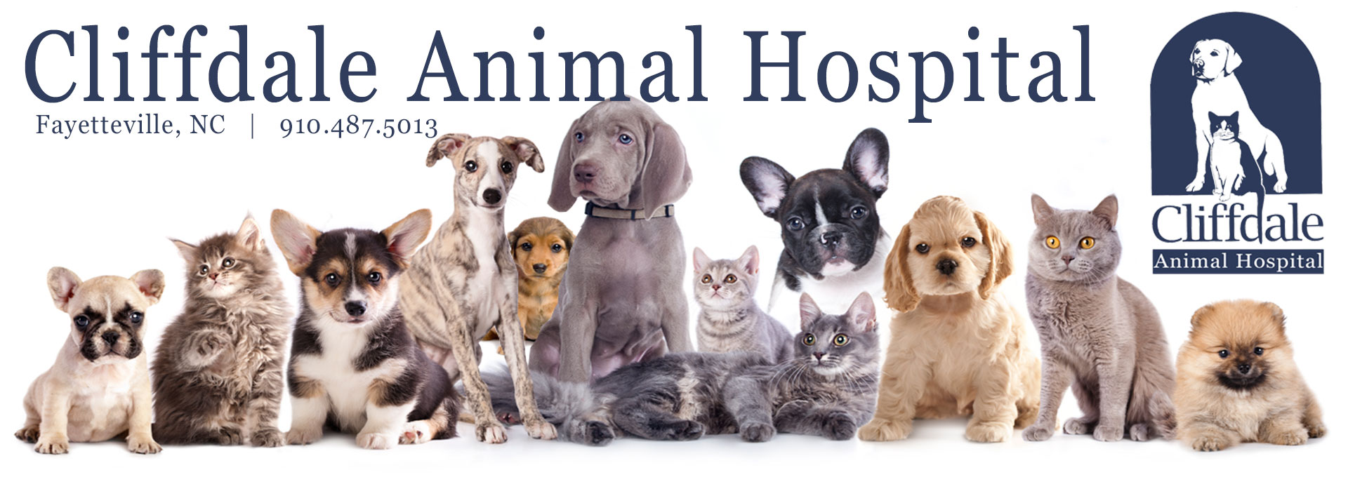Pet Care Staff Fayetteville, NC | Cliffdale Animal Hospital